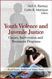 Youth Violence and Juvenile Justice 9781616680114