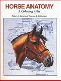 Horse Anatomy 2nd Edition