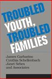 Troubled Youth, Troubled Families 9780202360409