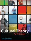 Cultural Theory 1st Edition