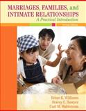 Marriages, Families, and Intimate Relationships 2nd Edition