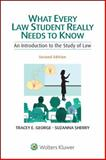 What Every Law Student Really Needs to Know 2nd Edition