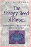 The Shaggy Steed of Physics 9780387941639