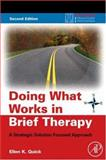 Doing What Works in Brief Therapy 2nd Edition