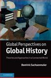 Global Perspectives on Global History 9781107001824
