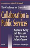 Collaboration in Public Services 9780765801838