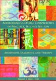 Addressing Cultural Complexities in Practice 2nd Edition