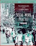 Techniques and Guidelines for Social Work Practice 9780205352319