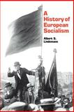 A History of European Socialism 9780300032468