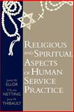Religious and Spiritual Aspects of Human Service Practice 9781570032622