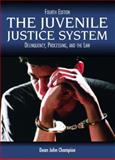 The Juvenile Justice System 9780131122871