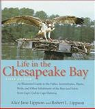 Life in the Chesapeake Bay 3rd Edition