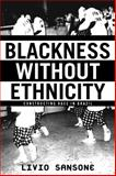 Blackness Without Ethnicity 9780312293741