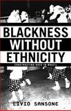 Blackness Without Ethnicity 9780312293758