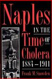 Naples in the Time of Cholera, 1884-1911 9780521893862