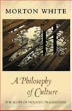 A Philosophy of Culture 9780691123981
