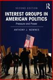 Interest Groups in American Politics 2nd Edition