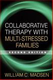 Collaborative Therapy with Multi-Stressed Families 2nd Edition