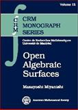 Open Algebraic Surfaces 9780821805046