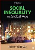Social Inequality in a Global Age 4th Edition