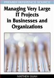Managing Very Large IT Projects in Businesses and Organizations 9781599045467