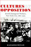 Cultures of Opposition 9780791445839