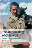 The Anthropology of Childhood 9780521716031