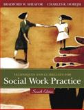 Techniques and Guidelines for Social Work Practice 9780205446179