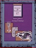 Anatomy and Dissection of the Rat 9780716726357