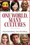 One World, Many Cultures 9780133947342