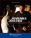 Juvenile Justice 3rd Edition