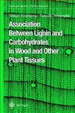 Association Between Lignin and Carbohydrates in Wood and Other Plant Tissues 9783540438052