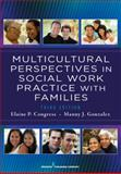 Multicultural Perspectives in Social Work Practice with Families, 3rd Ed 3rd Edition