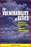 The Vulnerability of Cities 9781853838309