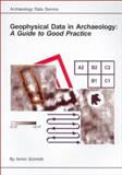 Geophysical Data in Archaeology 9781900188715