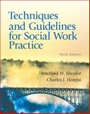 Techniques and Guidelines for Social Work Practice 9780205838752