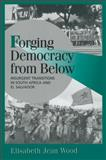 Forging Democracy from Below 9780521788878