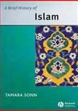 A Brief History of Islam 9781405109000
