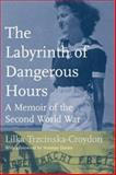 The Labyrinth of Dangerous Hours 9780802039583