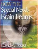 How the Special Needs Brain Learns 2nd Edition